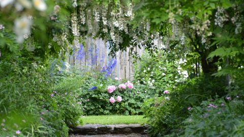 an inviting place to ground in the garden